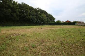 terrain à Corcelles-lès-Cîteaux (21)