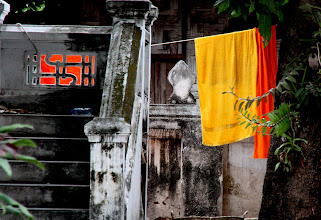 Photo: Day 284 - A Monk's Washing
