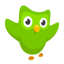 Duolingo on the Web