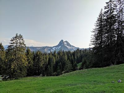Hirschberg mtb - June 19