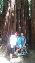 Photo: Mondo and the kids next to a nice redwood