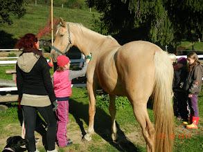 Photo: Kamarádka