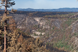 Photo: A look toward Bandelier - the Las Conchas fire ripped through the forest