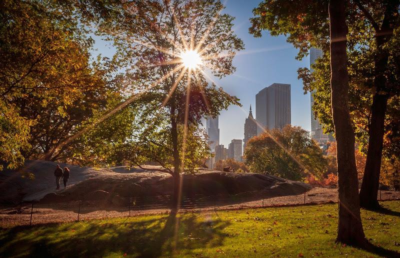 Buongiorno a Central Park di laura_bazzy_bazzan