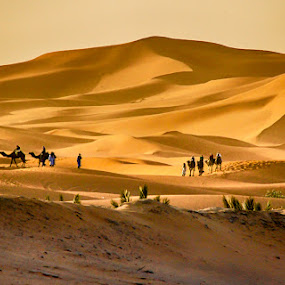 by Joško Šimic - Landscapes Deserts (  )