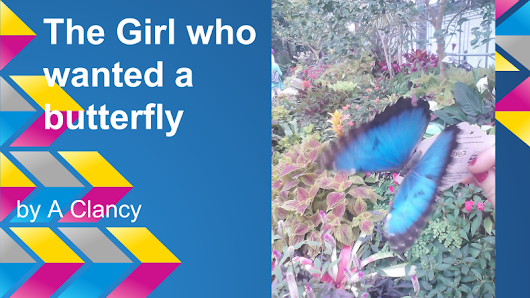 The Girl who Wanted to Catch a Butterfly