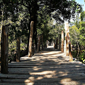 towards hEaVen !!! by Pratik Nandy - Landscapes Travel