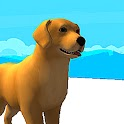 Dog Race 3D icon