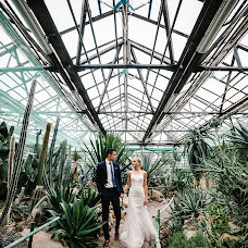 Wedding photographer Sergey Sobolevskiy (Sobolevskyi). Photo of 18.12.2017