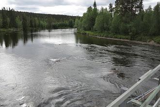 Photo: Rasteselet uppströms bron