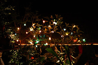 Photo: Day 269 - Xmas Evening in the Lao Lao Beer Garden #2