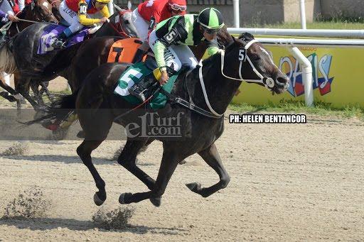 Chica De Oro (Ioya Bigtime) se queda con Condicional (1200m-Arena-LPI). - Staff ElTurf.com