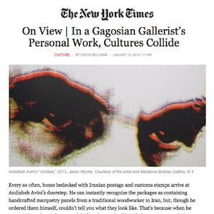 Andisheh Avini, The NY Times, 2014