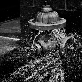 Busting at the Seams by Travis Wessel - City,  Street & Park  Fountains (  )