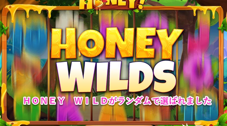 HONEY HONEY HONEY luckyniki