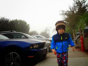 Photo: Finn In The Fog