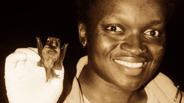 Исследователь Ироро Танши держит в руках летучую мышь