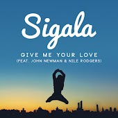 Give Me Your Love (Radio Edit) (feat. John Newman & Nile Rodgers)