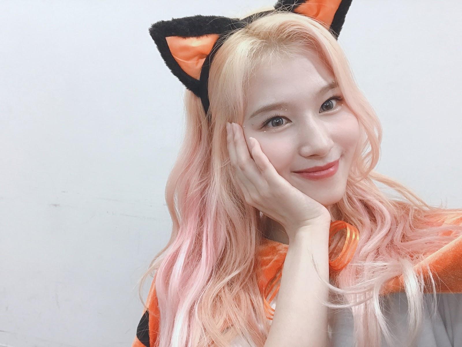 Sana-Halloween-Once-Japan-Cat