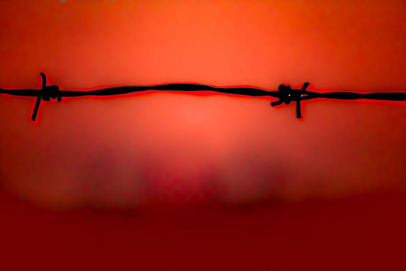 Rosso spinato di Navarro