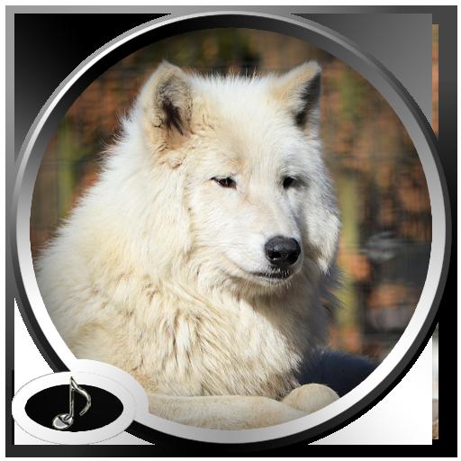 ウルフサウンド 音樂 App LOGO-硬是要APP