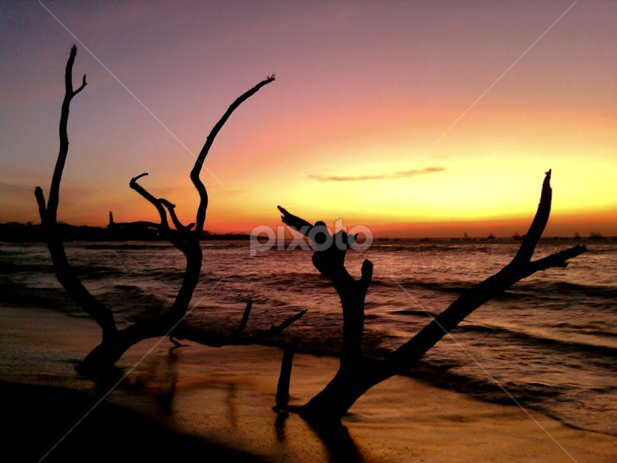 by William Shevchuk - Landscapes Waterscapes