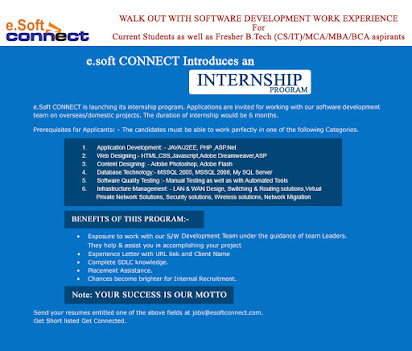 Software companies in lucknow for internship