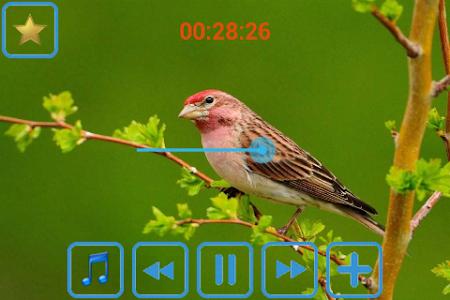 Nature sounds relax & sleep 1.2 screenshot 227183