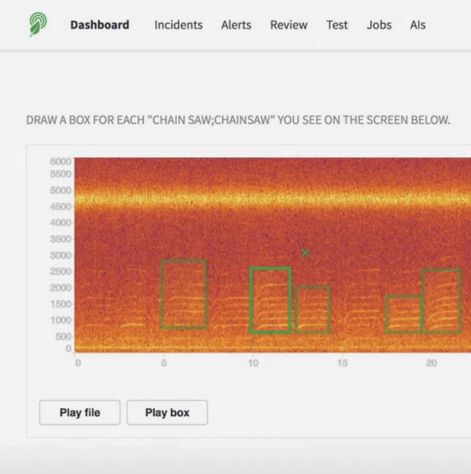Technologically advanced dashboard helps in identifying different sounds in the forest to save trees.