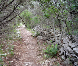 Photo: Along a trail in Friedrich Wilderness Park