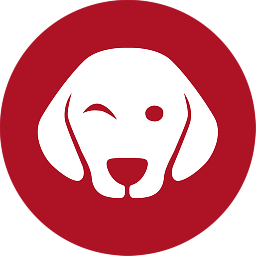 Napko avatar image