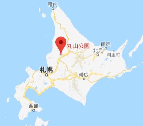 地図:丸山公園