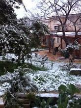 Photo: שלג בעמיעד, פברואר 2015. צילום רותם שגיא