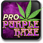 Marijuana Live Wallpaper - Purple Haze icon