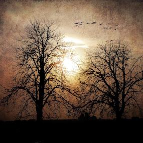 by Tatjana Blesic - Landscapes Travel