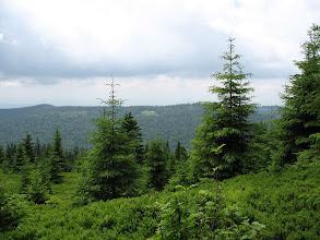 Photo: 20.Z drugiej strony doliny prześwituje rozległe Pasmo Lubania, które miałem okazję przejść w 2009 roku (nota bene część Głównego Szlaku Beskidzkiego).