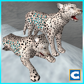 Ultimate Arctic Leopards