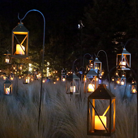 Field of Lamps by Tony Huffaker - Artistic Objects Other Objects ( field, lamps, utah, candles, display )