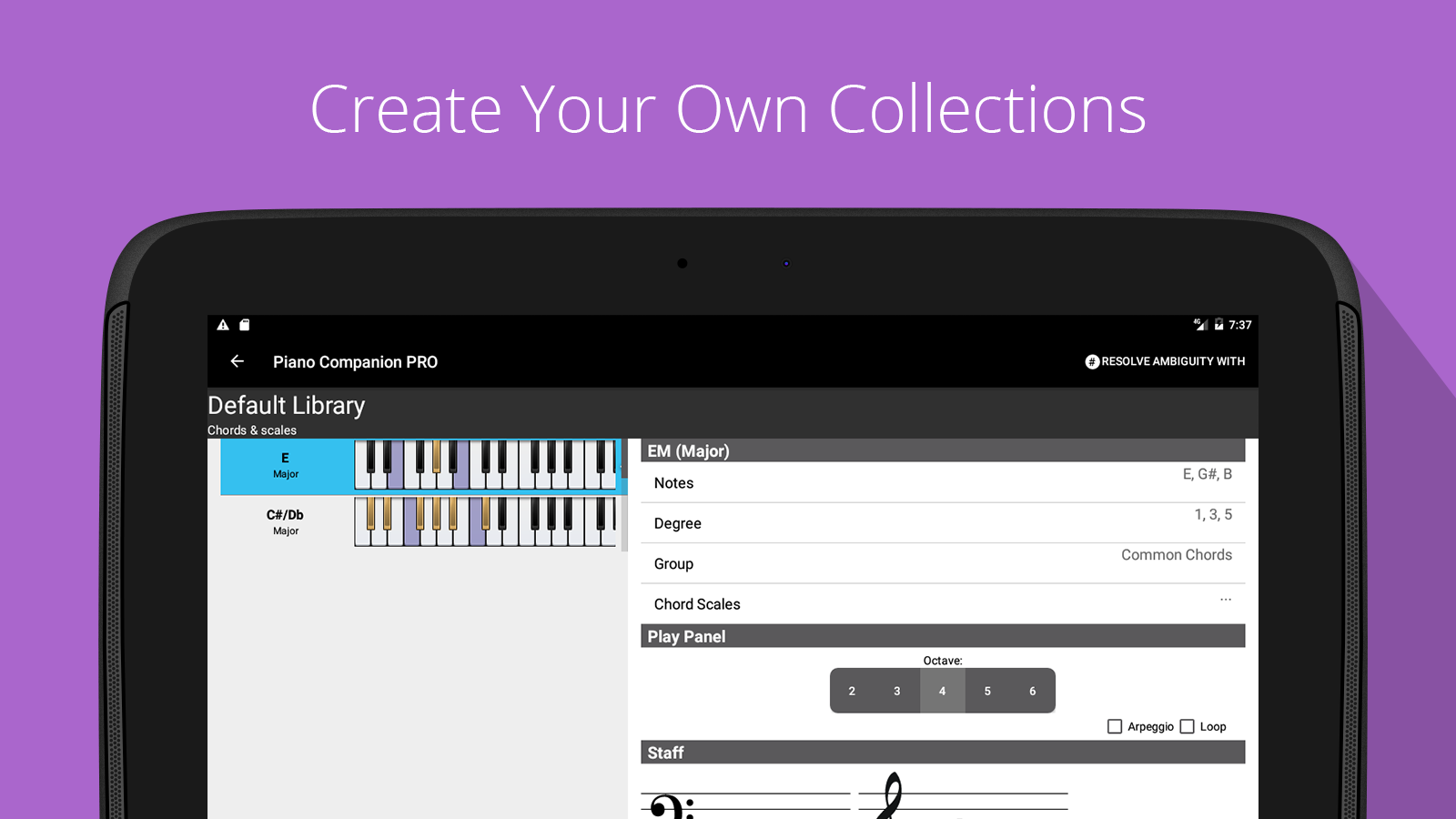 Piano Chord, Scale Companion- screenshot