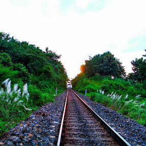The Way  by Prince Frankenstein - Instagram & Mobile Android ( assam, railway, track, photography, mobile,  )
