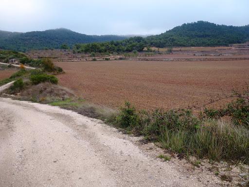 Tossal Gros de Vallbona