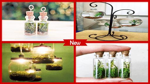 1000+ DIY Terrarium Miniature Ideas 4.1 screenshots 3