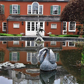 Quiet Reflection by Denise DuBos - Buildings & Architecture Public & Historical ( houmas house, reflection pond, historic, gardens, plantation )