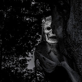 Ghoul in a tree by Ron Biedenbach - Public Holidays Halloween ( black and white, ghoul, halloween )