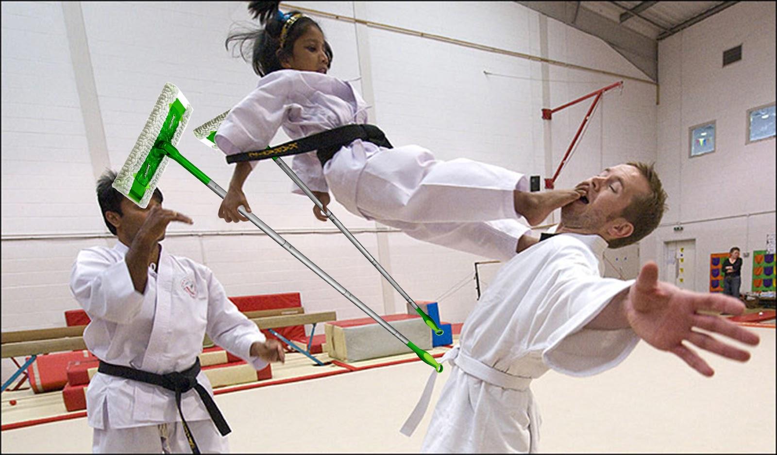 Karate Sweeper.jpg