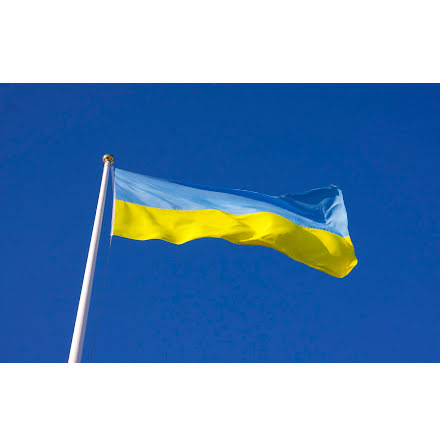Ukraina Flagga