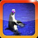 Dolphin Soccer icon