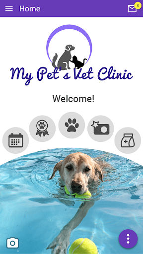 my pets vet clinic kirkland screenshot 1