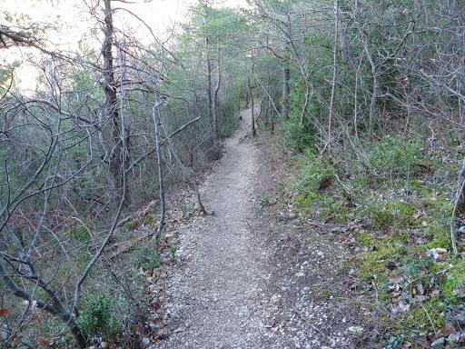 sentier vers les dentelles de montmirail depuis l'esclériade en provence