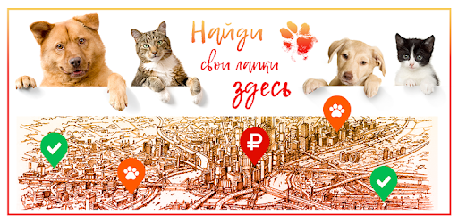 Paws - a convenient ad service, with the function of finding lost animals
